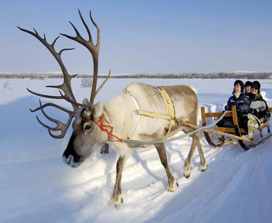Zimowe szaleństwo w Finlandii